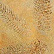 Imprints - Abstract Art By Sharon Cummings Poster