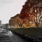 In A Dreamy Autumn Haze Poster