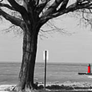 In The Distance South Haven Lighthouse Poster