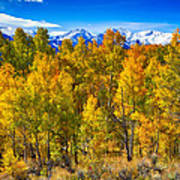 Independence Pass Autumn Colors Poster