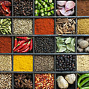 Indian Spice Grid Poster