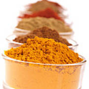 Indian Spices Poster
