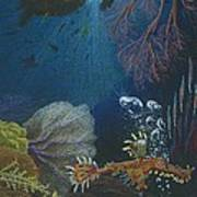 Indigenous Aquatic Creatures Of New Guinea Poster by Beth Dennis