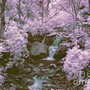 Infrared Mountain Stream Poster