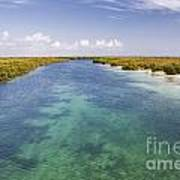 Inlet Leading To Caribbean Ocean Poster
