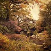Intimate Landscape Poster by Jessica Jenney