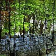 Ireland Stone Wall And Trees Poster