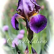 Iris Congratulations Card Poster