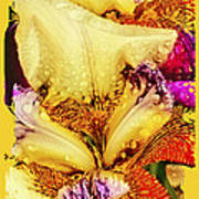 Iris - Customized Poster