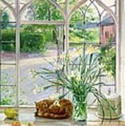 Irises And Sleeping Cat Poster by Timothy Easton