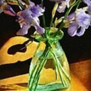 Irises In Morning Light Poster