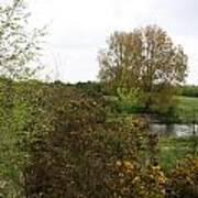 Irish Landscape In Spring Poster