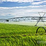 Irrigation On Saskatchewan Farm Poster by Elena Elisseeva