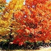 Is Autumn Already Poster