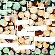 Isn't It Good Norwegian Wood Poster