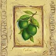 Italian Fruit Limes Poster