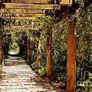 Italian Pergola Hallway Poster