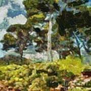Italian Stone Pine Poster