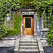 Ivy Covered Doorway - Trinity College Dublin Ireland Poster