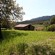 Jack London Stallion Barn 5d22056 Poster by Wingsdomain Art and Photography
