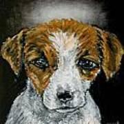 Jack Russell Terrier Angel Poster by Jay  Schmetz