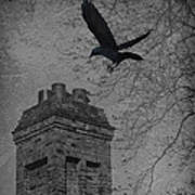 Jackdaw Flying To Chimney Poster
