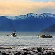 Jackson Bay South Westland New Zealand Poster