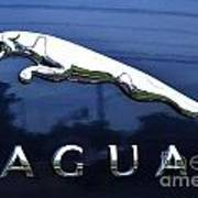 A Gift For Dads And Jaguar Fans Poster