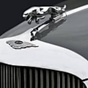 Jaguar Mk Ix Hood Poster