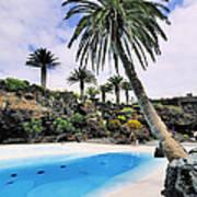 Jameos Del Agua On Lanzarote Poster
