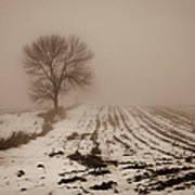 January Fog Poster