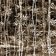 Japanese Bamboo Sepia Grunge Poster