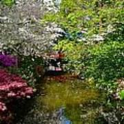 Japanese Garden In Bloom Poster