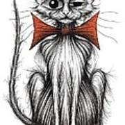 Jasper The Cat Poster