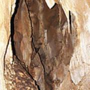 Javoricko Stalactite Cave Poster