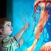 Jellyfish Boy Poster