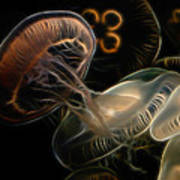Jellyfish Digital Art Poster