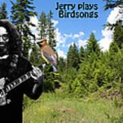 Jerry Plays Birdsongs Poster