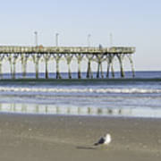 Jolly Roger Pier On Topsail Beach Nc Poster