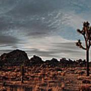 Joshua Tree Hidden Valley Panorama Poster