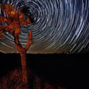 Joshua Tree Star Trails Poster