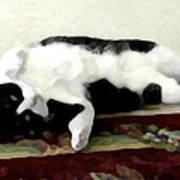 Joyful Kitty Poster