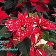 Joyous Christmas Poster