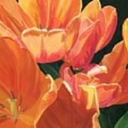 Julie's Tulips Poster