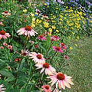 July Garden Poster