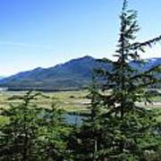 Juneau From Glacier Gardens Poster