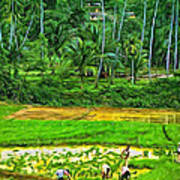 Jungle Homestead - Paint  Poster