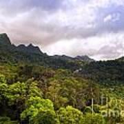 Jungle Landscape Poster