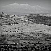 Juniper Hills To Snowy Arctic Peaks Black And White Poster