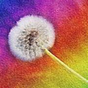 Just Dandy Rainbow 2 Poster